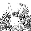 兔子穗 圖像