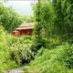 創作者 竹林茶苑 的頭像