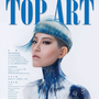 TOP ART HAIR