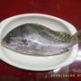 trout1235