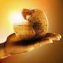 全球運彩投資網